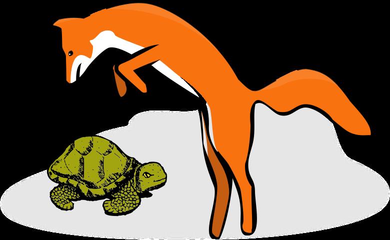Fuchs und Schildkröte