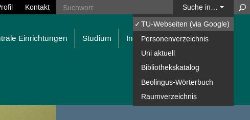 Screenshot der Auswahlliste der neuen Suche